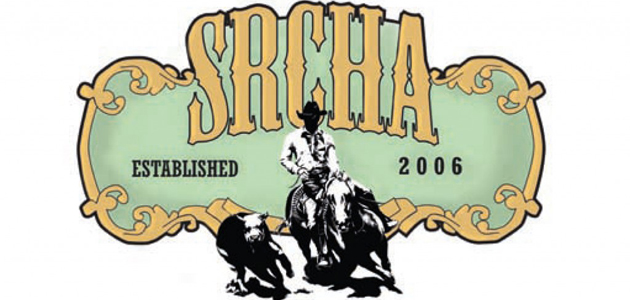 srcha-1-1024x724