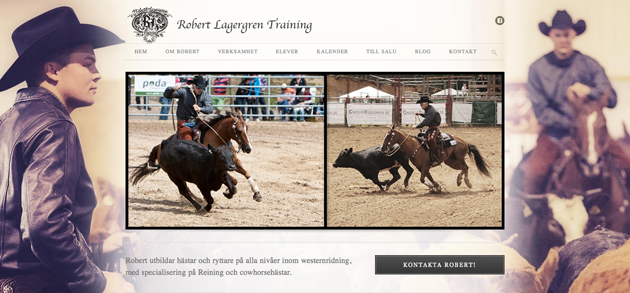 RobertLagergrenWeb