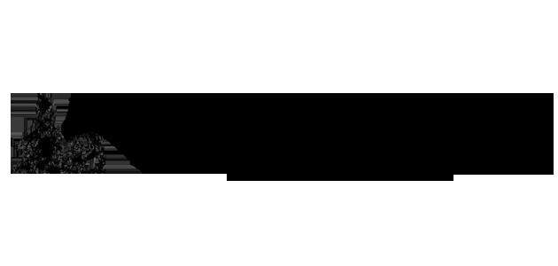 logoaich2014-f